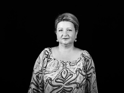 Carmen Andrei - economist