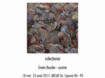 AFIS Ucenicie printre arte. Sorin Costina, colecționar
